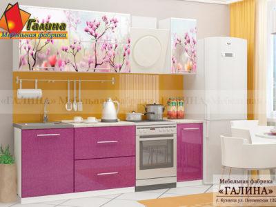 Кухонный Гарнитур Ф-29